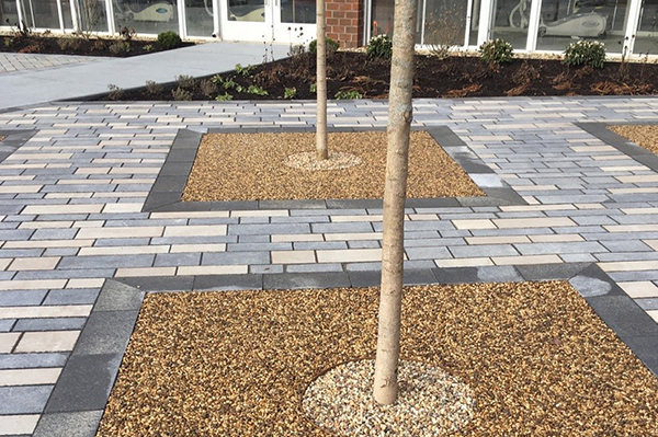 GeoPaveX is ideal for tree pits